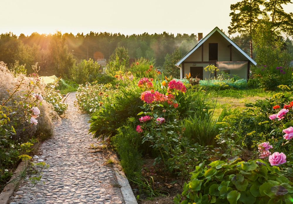 Jardin ornemental opter pour un massif d coratif Massif decoratif jardin