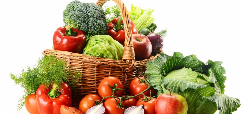 ob_4e6a96_legumes-jardin-bio-845531