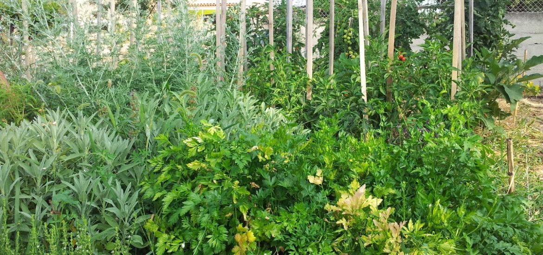 conseils pour le jardin avec loisir. Black Bedroom Furniture Sets. Home Design Ideas