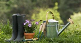 echange-service-jardinage