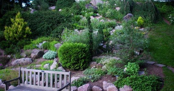 Conseils jardin am nagement equipement de jardin for Equipement jardin